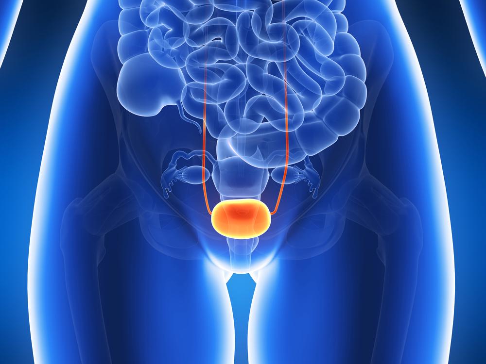 Гиперактивный мочевой пузырь — ЗдоровьеИнфо