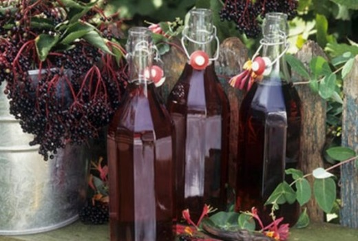 Напиток из свежих плодов