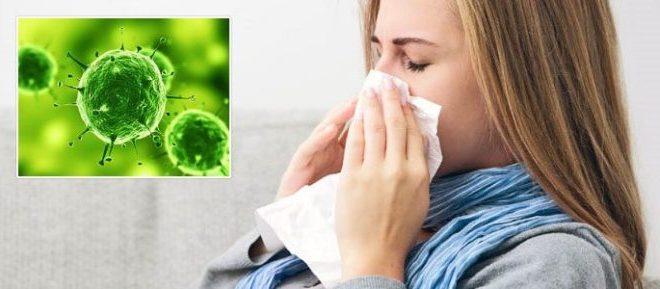 Заболевание вирусным ринитом: симптомы, лечение и профилактика