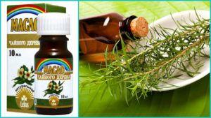 Применение масла чайного дерева от насморка