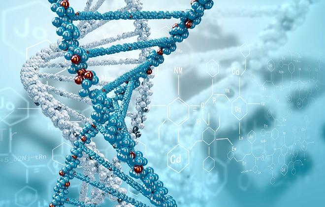 Человеческие ДНК с разными хромосомами