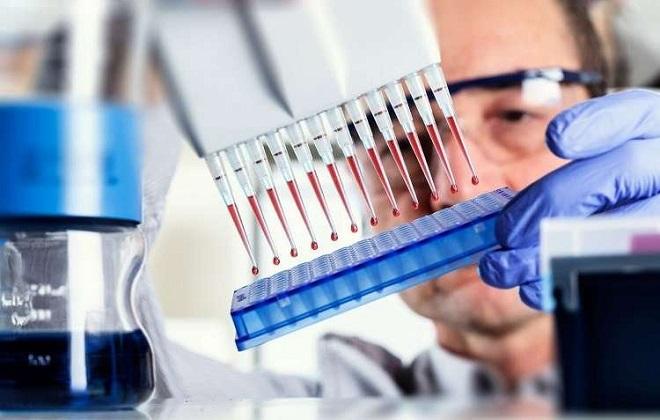Наполнение образцами крови пробирок