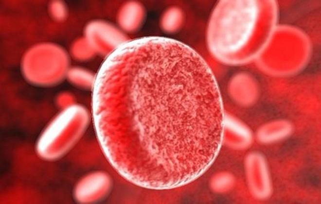 Правильные обозначения групп человеческой крови