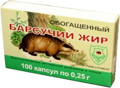 лечебные свойства барсучьего жира
