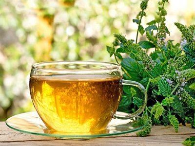Зеленый чай при простатите