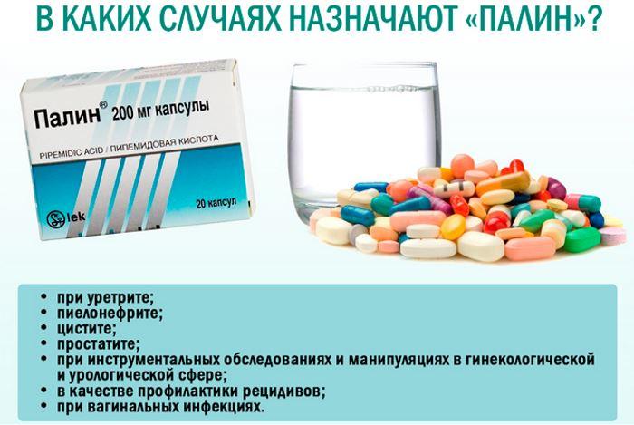 палин антибиотик