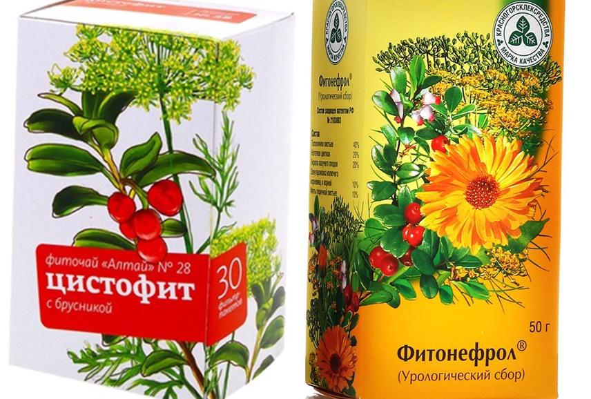 цистит травы для лечения