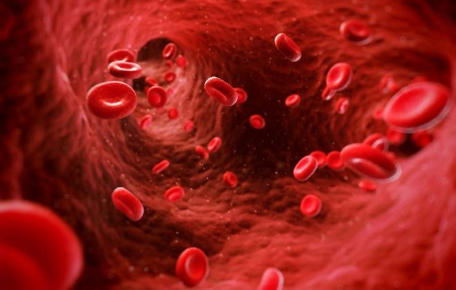 Как поднять эритроциты в крови народными средствами