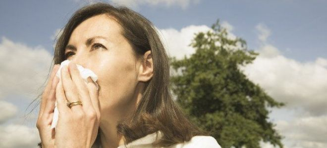 Что собой представляет аллергический ринит и каково его лечение народными средствами