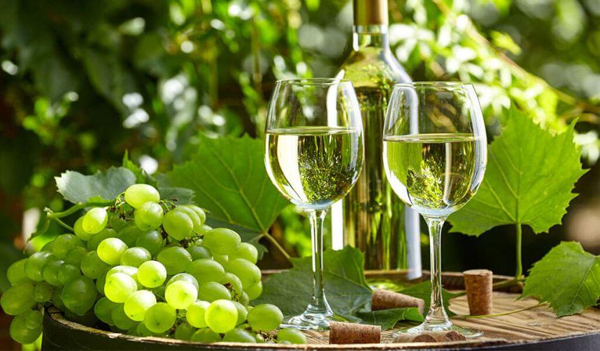 Ученые: белое вино вызывает рак предстательной железы - 24СМИ