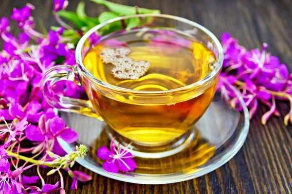 кипрей чай при простатите