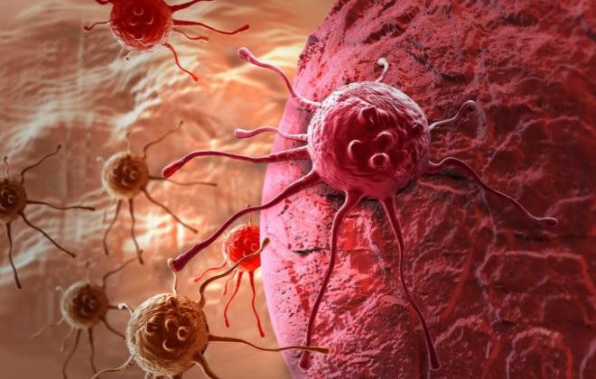 Генетическая предрасположенность к раку