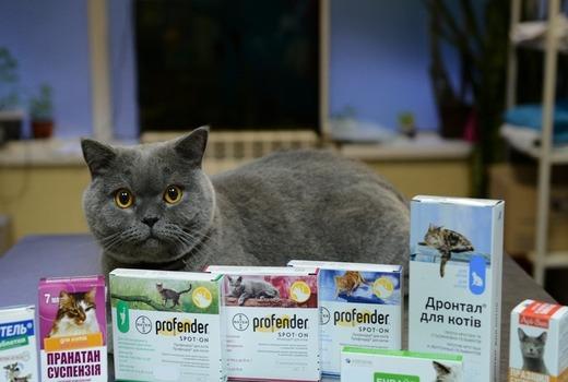 Медикаменты для животных